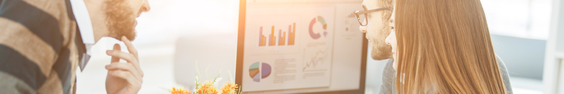 Analytics and Reporting Software. ERP Analytics Solution.